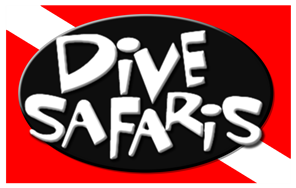 Dive Safaris St Maarten